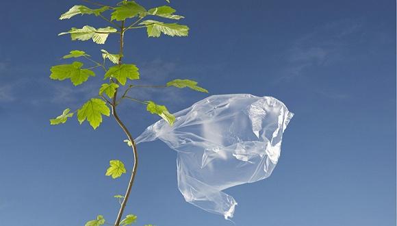 """国家再出""""限塑令""""塑料行业企业该如何做?"""