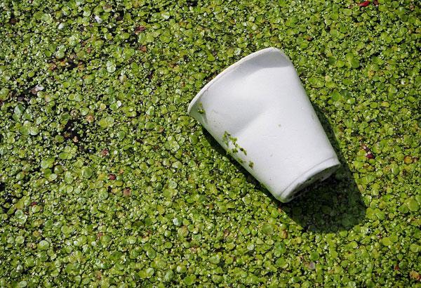 工信部:我国聚乙醇酸(PGA)生物可降解塑料产业步伐加快