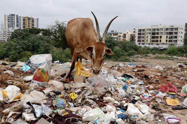 9部门联合印发通知 塑料污染治理出重拳