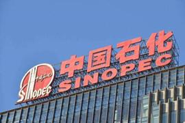 中俄合作建设全球最大聚合物工厂 中国石化持股40%